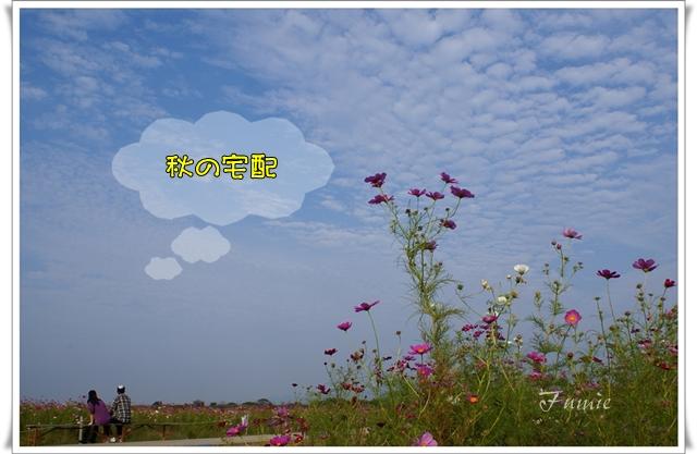 秋のお便り ひつじ雲